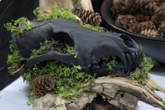 Painted Black Coyote on Driftwood - 018