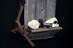 Coyote & Beaver on Barn Board - 027