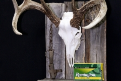 Whitetail Deer on Barn Board /w Display - 056